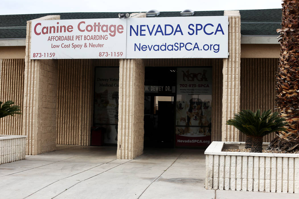 Southern Nevada SPCA Installs New Leadership Team after Tumult